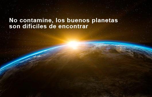 frase 1 medio ambiente planeta