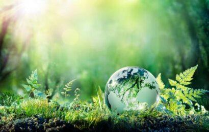 frases célebres inspiradoras medio ambiente