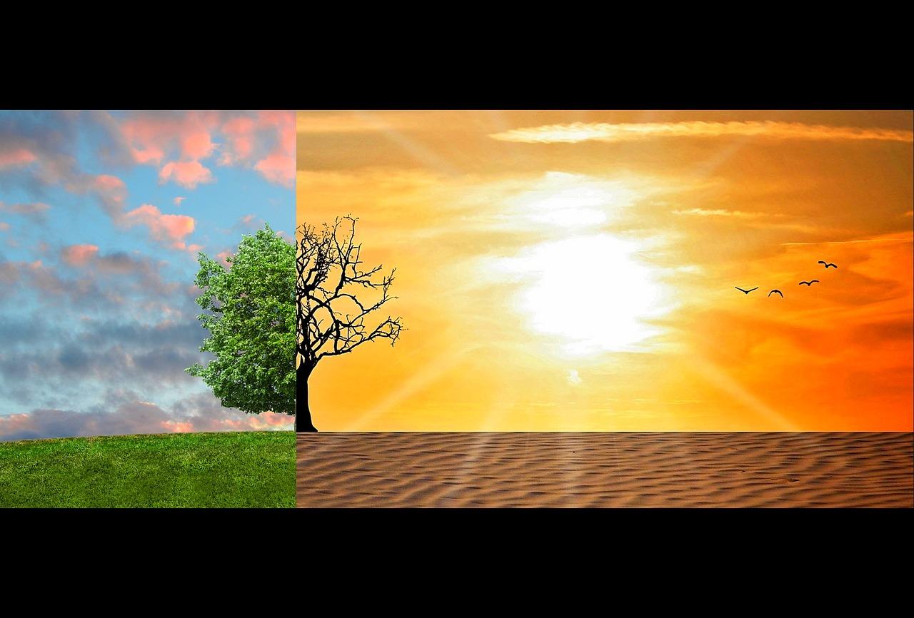 calentamiento global de las consecuencias