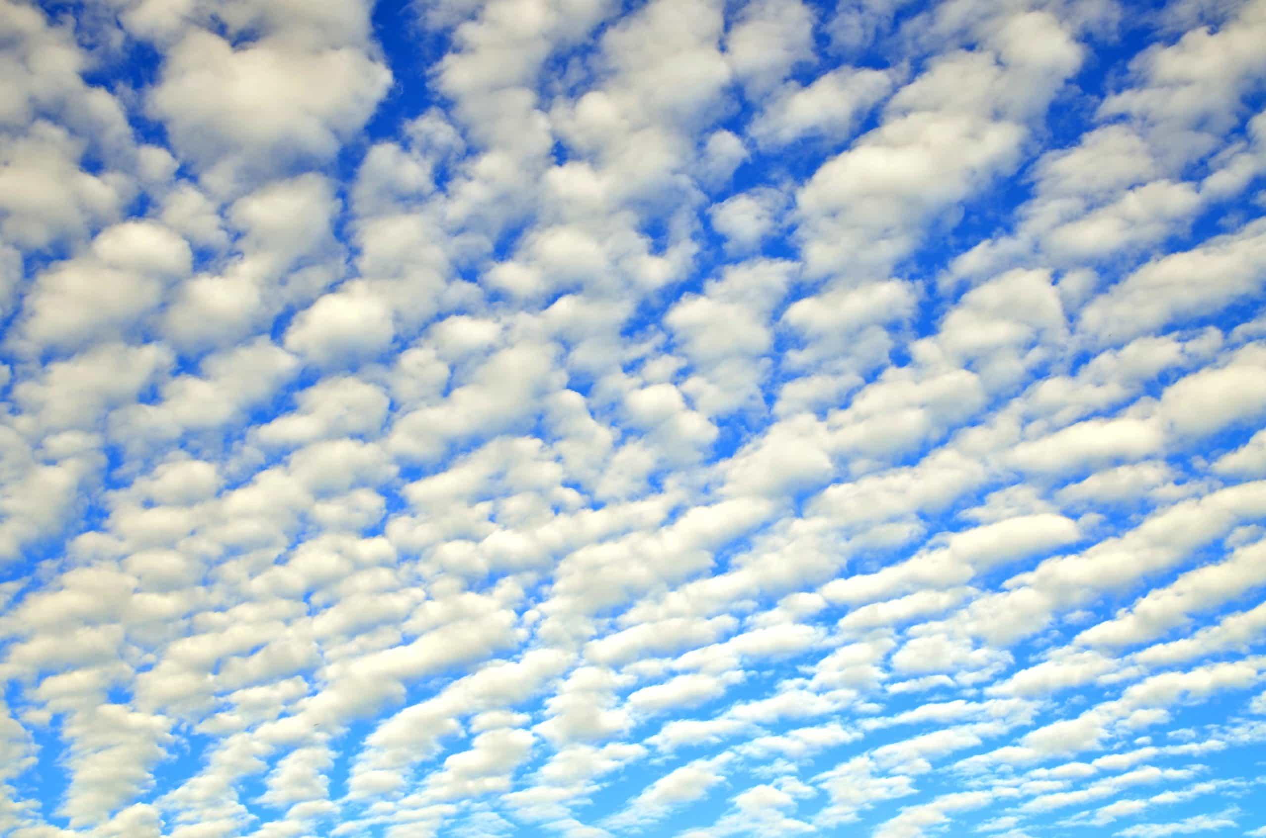 cirrocúmulos nubes