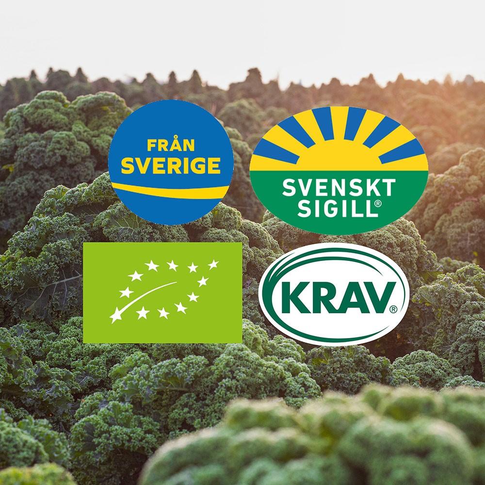 Certificado verde Suecia