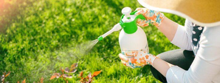 control de plagas sin pesticidas