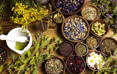 medicinas para botiquin naturales
